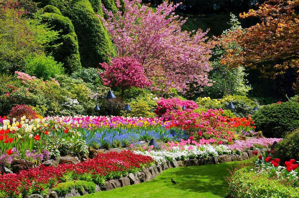 Descubre TU MUNDO: Destino: los preciosos Jardines ...