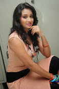 Actress Bhanusri Glamorous Photo shoot-thumbnail-10