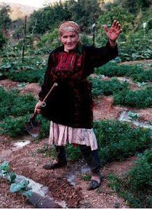 Pour la retraite de la femme paysanne