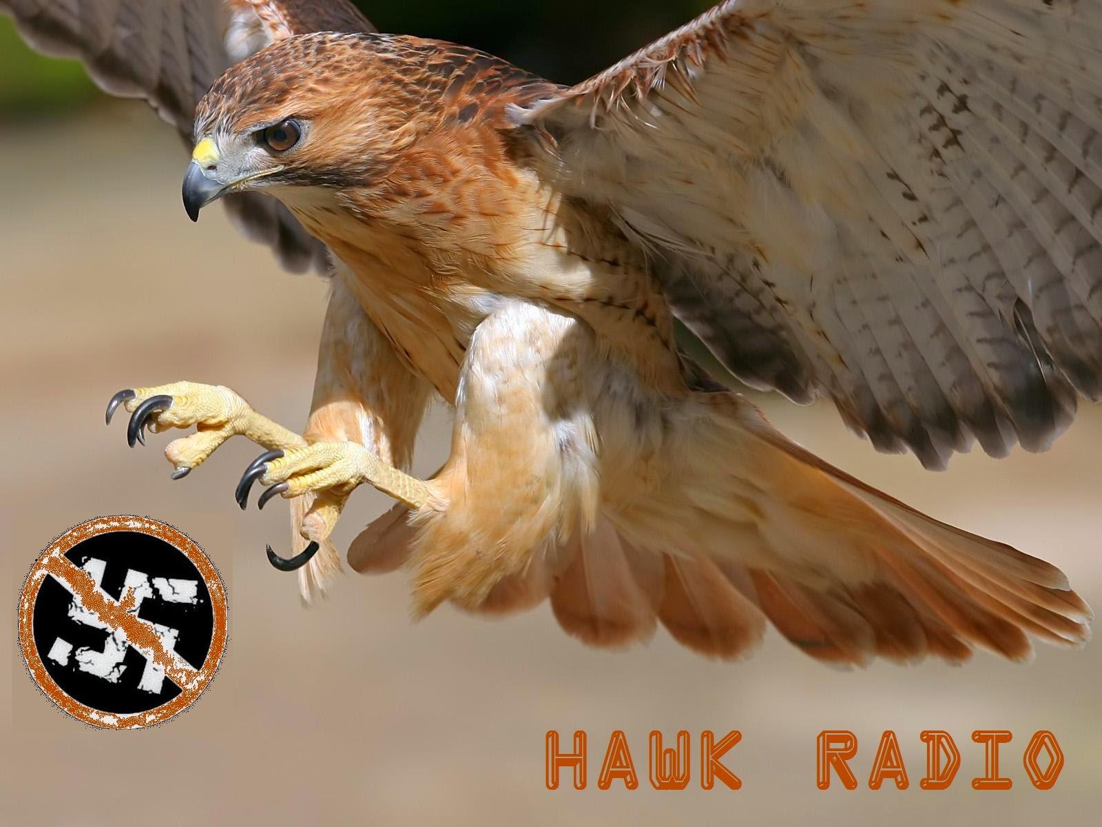 http://radiohawk.blogspot.gr/