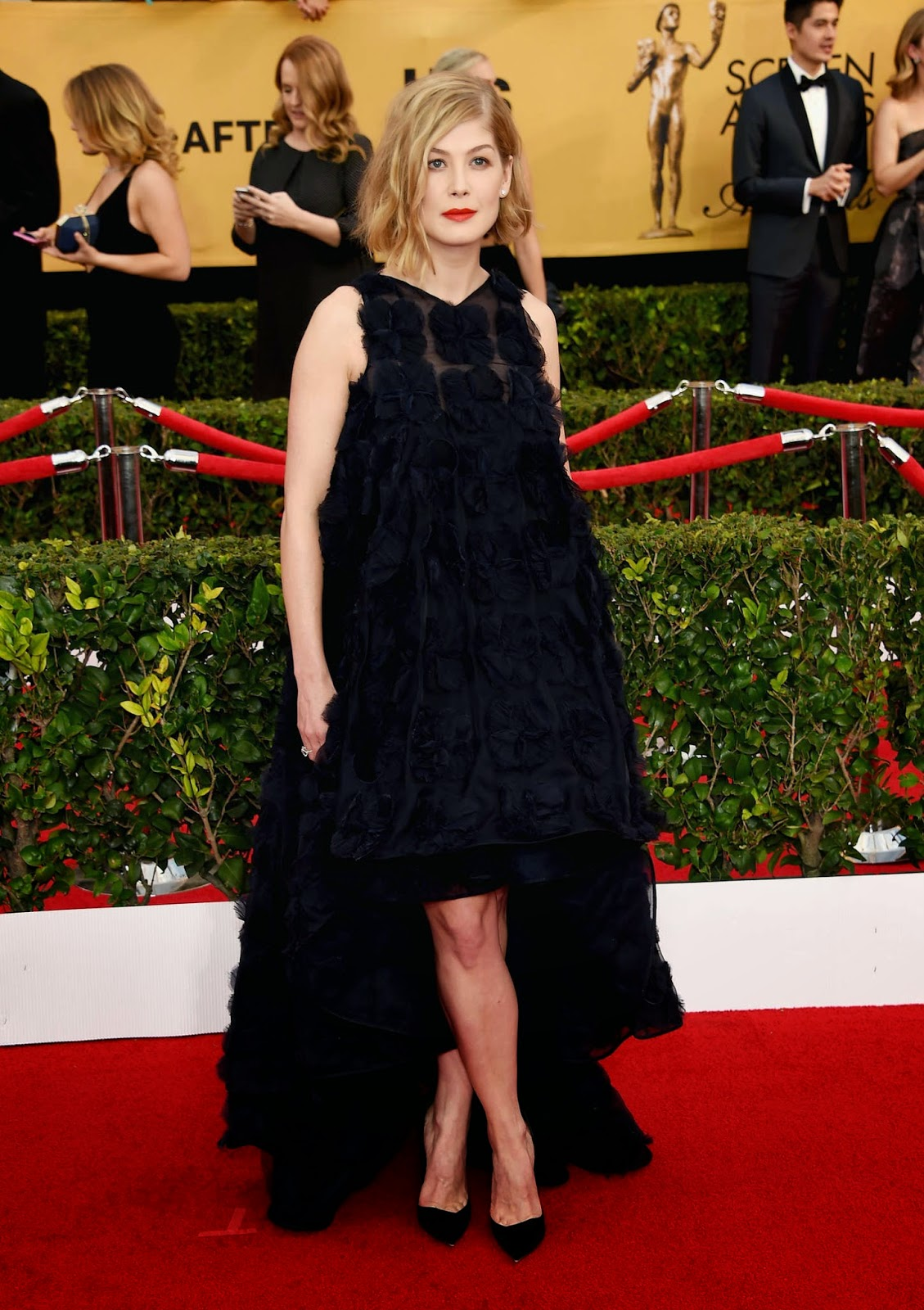 Rosamund Pike flaunts Christian Dior Couture at the 21st Annual SAG Awards in LA