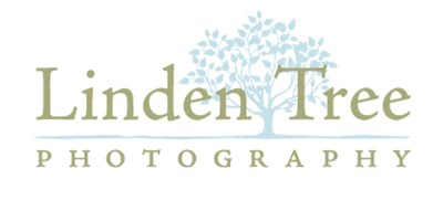 Linden Tree Photography