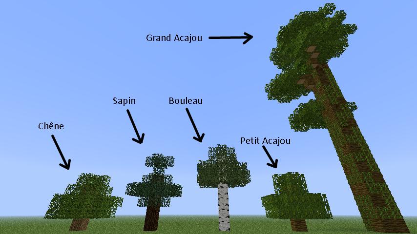 Minecraft les crafts for Ou trouver du bois flotte en belgique