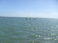 Amo o mar