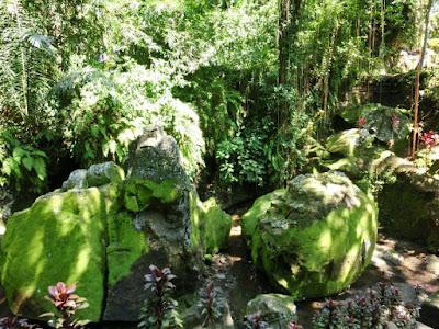 Green path in Goa Gajah Gianyar