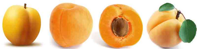 benefits_of_eating_apricots_fruits-vegetables-benefits.blogspot.com(1)