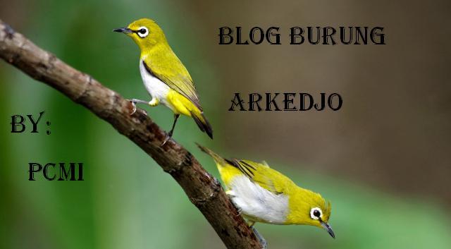 blog'e farid