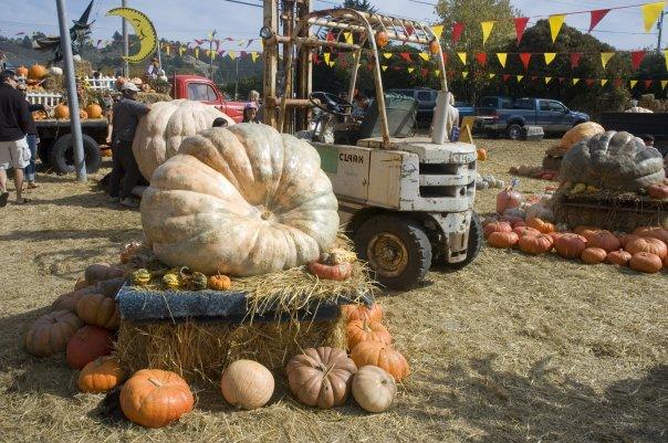 Smash Food Truck Lorain