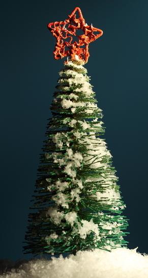 Photo d'un sapin de Noël.