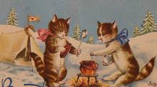 La vie des chats vieil album
