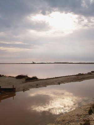 Camargue: saline di Port Saint Louis du Rhone