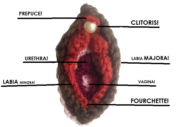Vulva Is 2013