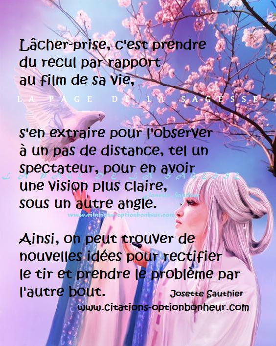 Citations Option Bonheur Citation Pour Lacher Prise