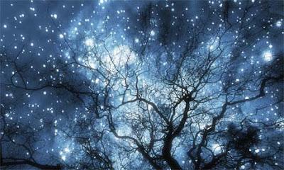 winter solstice night sky lit with stars
