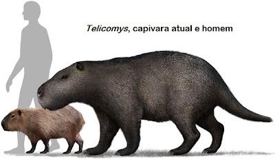 carpincho gigante prehistorico Telicomys