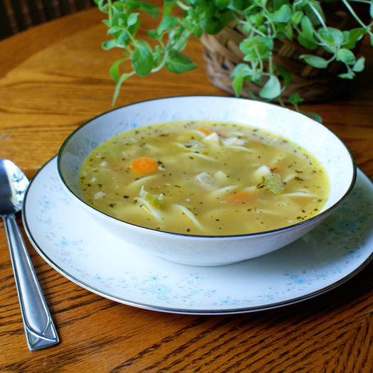 Quick and Easy Chicken Noodle Soup with fresh carrots, celery and onions