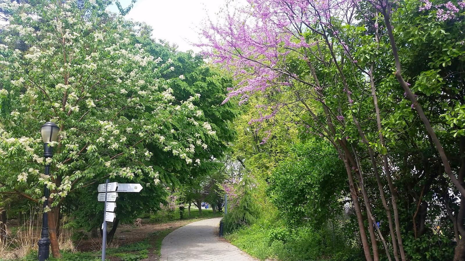 Queens Botanical Garden Flushing Ny