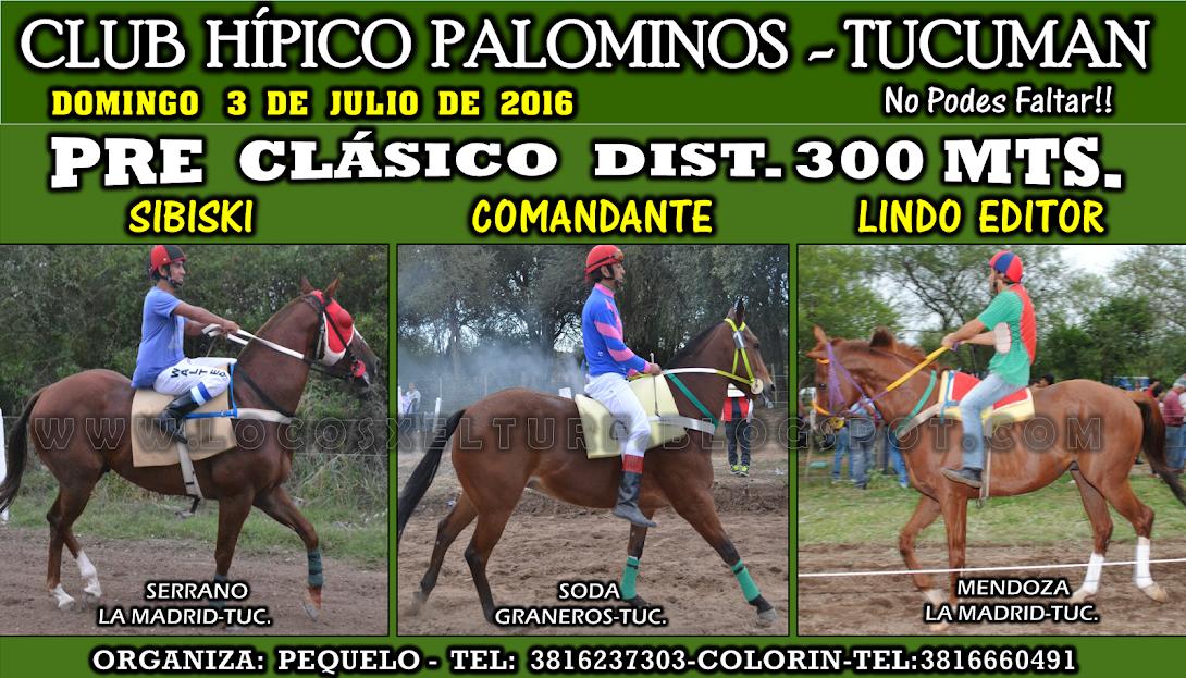 03-07-16-HIP. PALOMINOS-PRE CLAS-