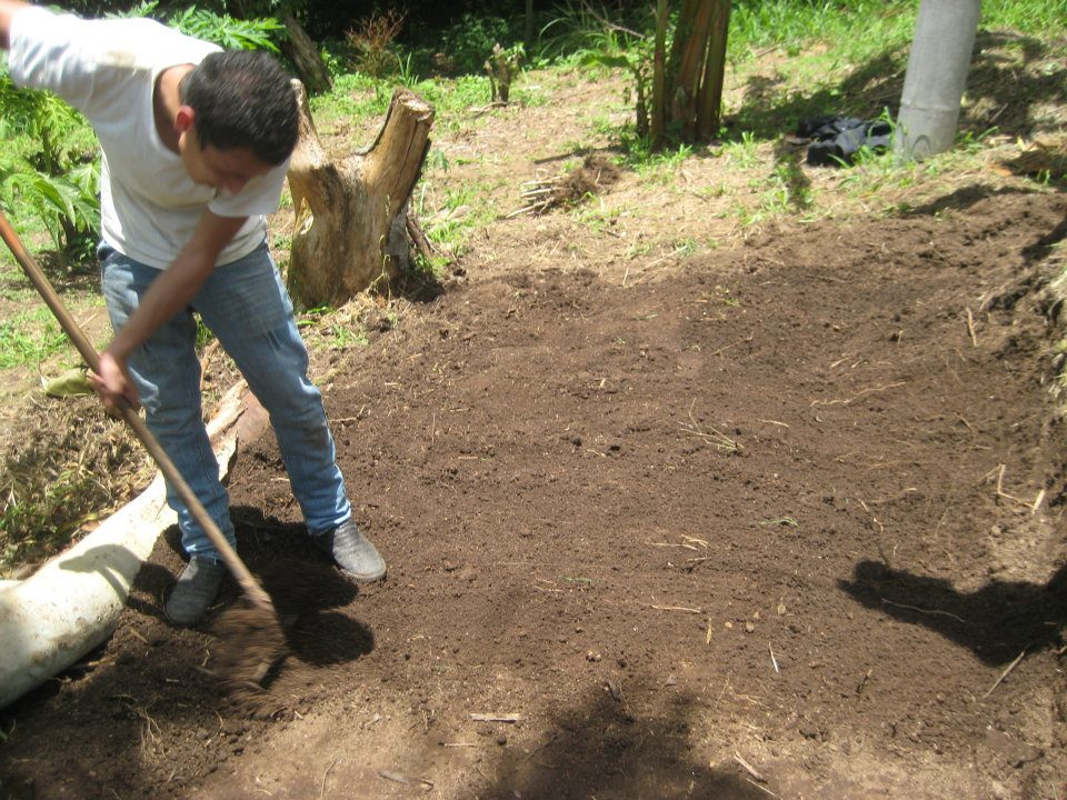 Full agro manos a la obra - Preparacion de la tierra para sembrar ...