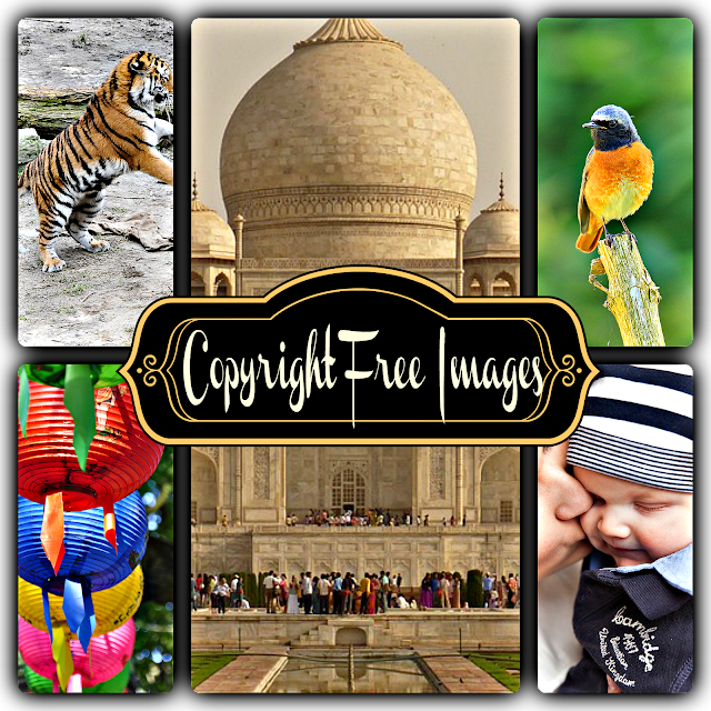copyright free images, tiger, bird, TajMahal, mother, child, lanterns, blogging tips