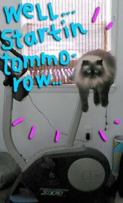 exercise-bike-cat03