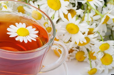 papatya çayının faydaları, papatyanın faydaları, papatya çayı nelere iyi gelir