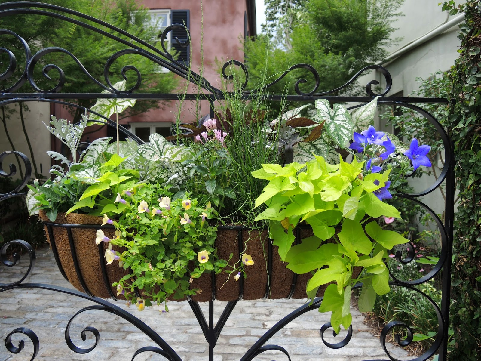 charleston window box gate hanging wrought iron