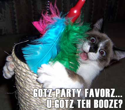 lolcat rave 
