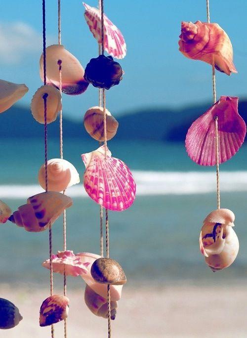 conchiglie-spiaggia