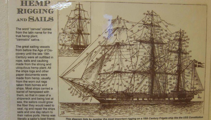 cânhamo era usado desde antes do Descobrimento da América