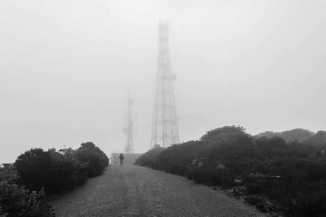 walking on mist covered road near mount william summit