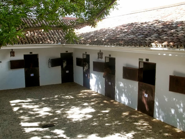 Horse stables at Ronda riding school on Semi-Charmed Kind of Life
