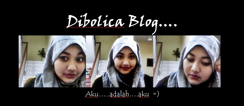 dibolica blog
