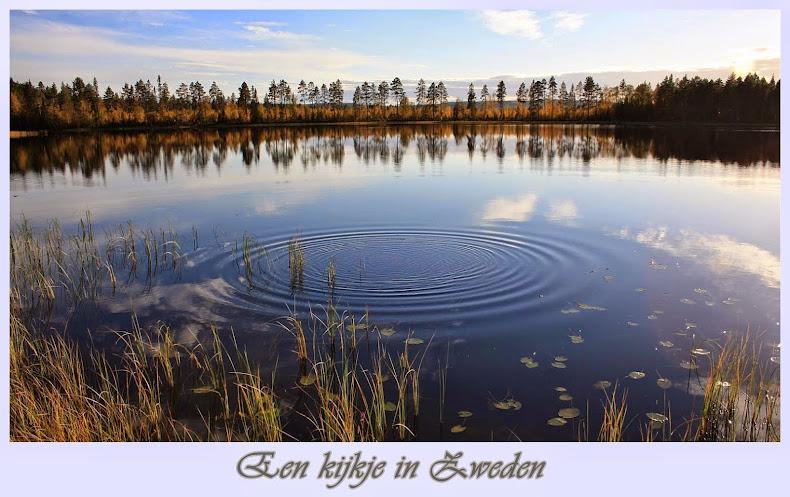 Een kijkje in Zweden