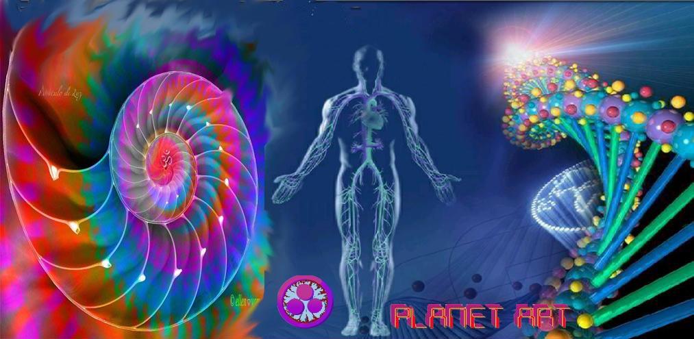 Tu Salud con FOTOS de tu IRIS y con el Analizador MAGNETICO BIOelectric