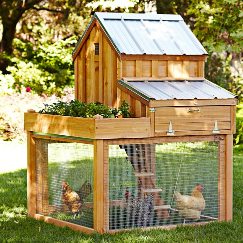 Veggie garden girl williams sonoma fancy chicken coops for Fancy chicken coops