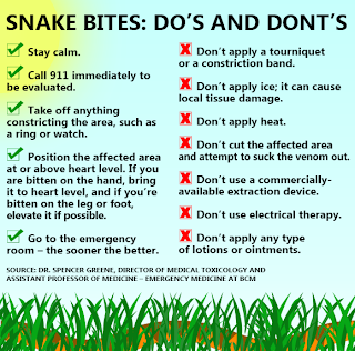 Infographic of Snakebite Do's and Don'ts