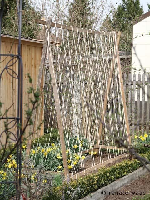 gartenblog geniesser garten gemuesegarten im april. Black Bedroom Furniture Sets. Home Design Ideas