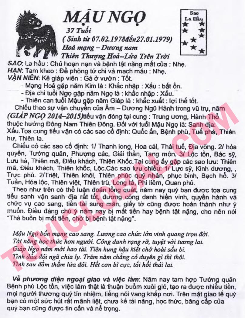 Xem tử vi tuổi Mậu Ngọ nam mạng năm 2014 Giáp Ngọ