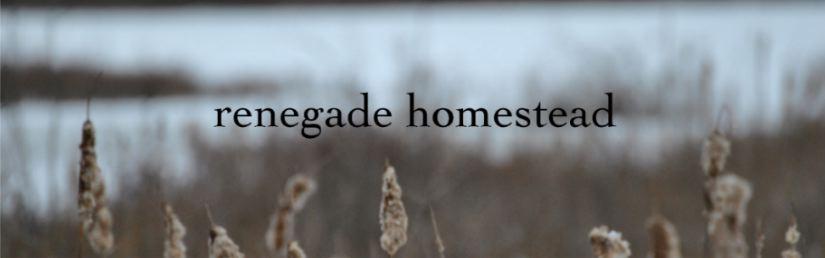 renegade homestead