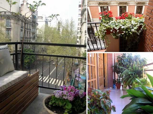 Decoraci n de balcones con plantas cocinas modernas for Balcones con plantas