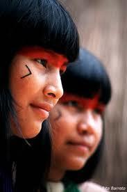 Missões com os Índios do Brasil .. .