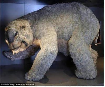 史前巨獸 袋熊