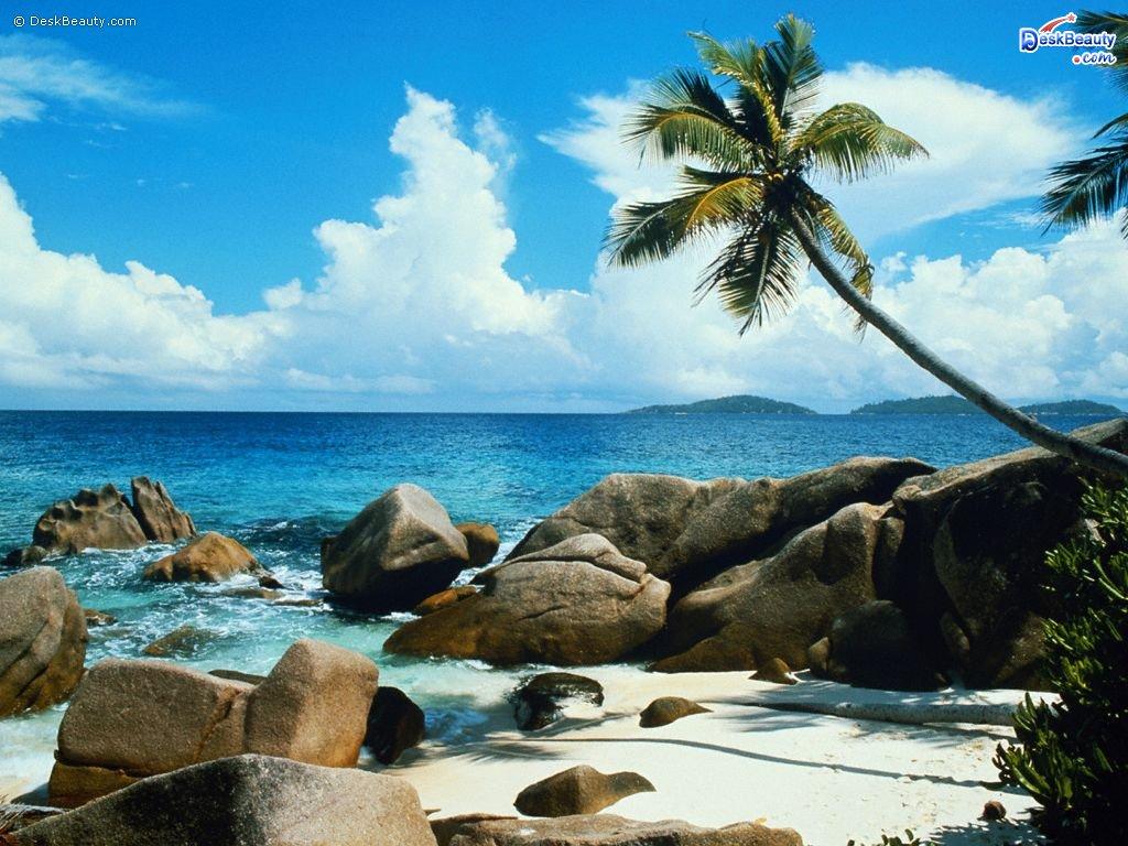 http://2.bp.blogspot.com/-5bMUvHviyaE/T9gZjVqudEI/AAAAAAAAAhA/ufm4cpVpPsA/s1600/Beach+side+Nature+Wallpaper.jpg