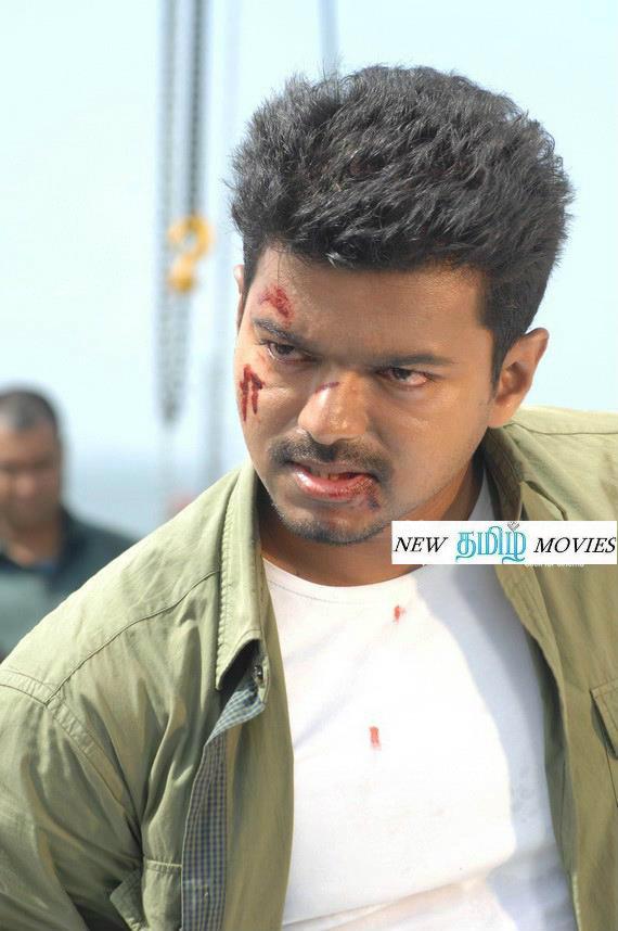 Actor Photos Vijay Thppakki Photos