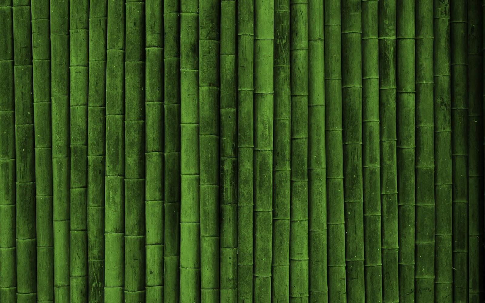 bambu papers