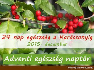 adventi egészségnaptár, karácsonyi tippek, karácsonyi készülődés