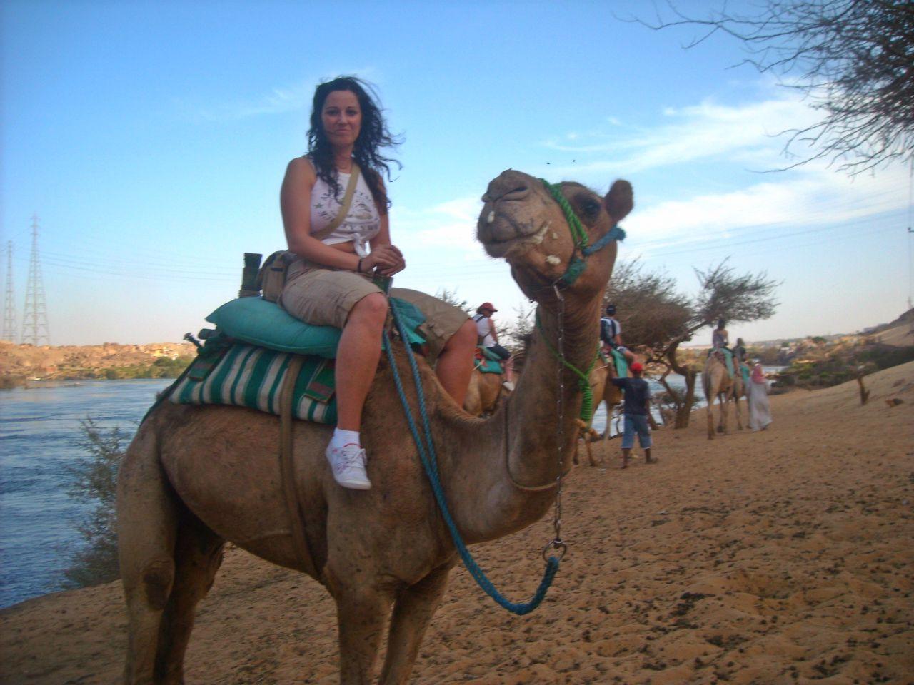 Viaje a Egipto: paseo en dromedario. Egypt trip