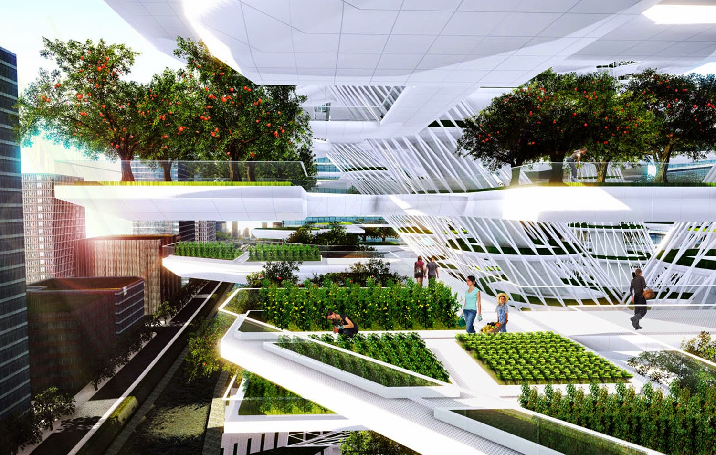 granja urbana integrando a la sociedad
