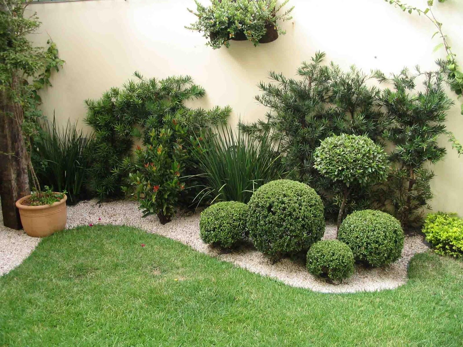 ideias para um jardim bonito:terça-feira, 12 de março de 2013